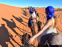 Students Riding Camels in Morocco